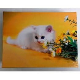 Pudełko dekoracyjne 20x14 cm